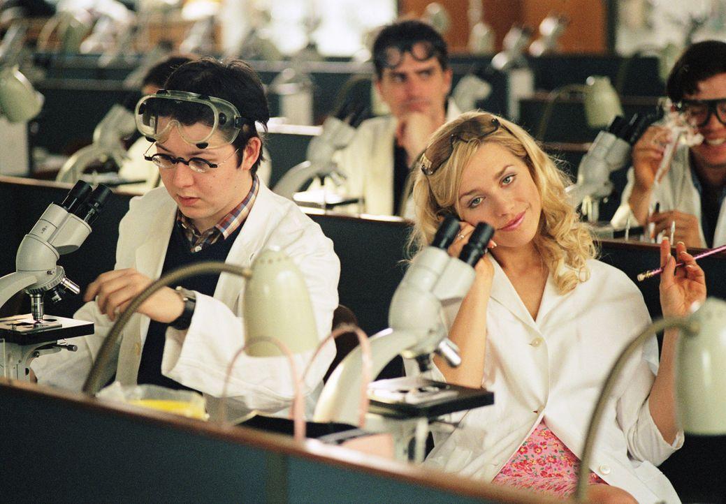 Als die attraktive Pharmaziestudentin Denise (Julia Dietze, r.) eine wichtige Chemieprüfung vermasselt, wird ihr klar, dass sie dringend einen guten... - Bildquelle: Lucia Fuster ProSieben