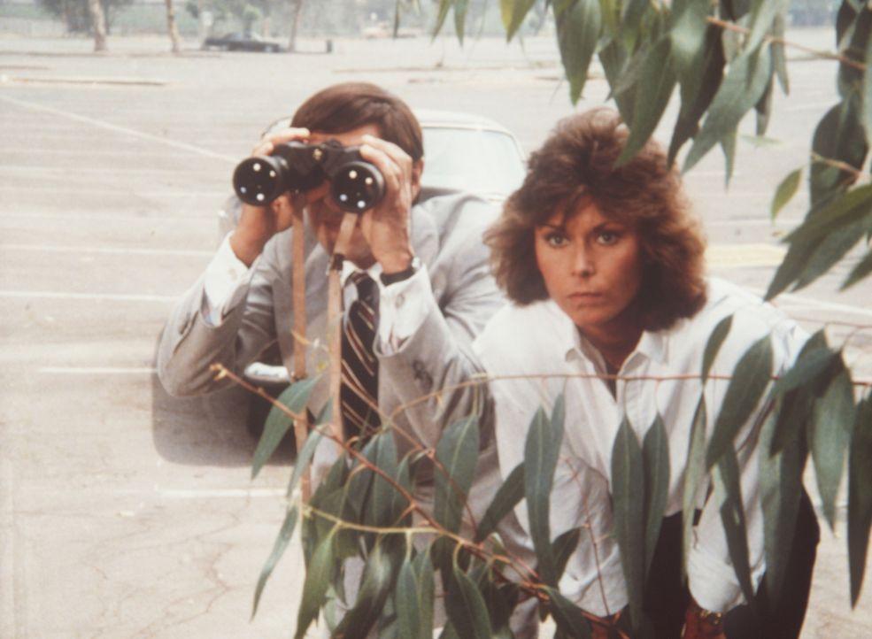 Amanda (Kate Jackson, r.) und James Brand (Harvey Jason) beobachten einen weltbekannten Diplomaten bei einem Sabotageakt. Doch noch will niemand ihn...