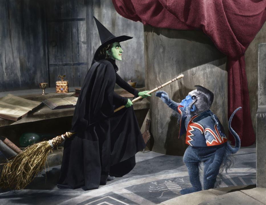 Die böse Hexe des Westens (Margaret Hamilton) schwört Rache. Gemeinsam mit ihrem fliegenden Affen versucht sie alles, um Dorothy wieder einzufangen... - Bildquelle: Warner Bros.