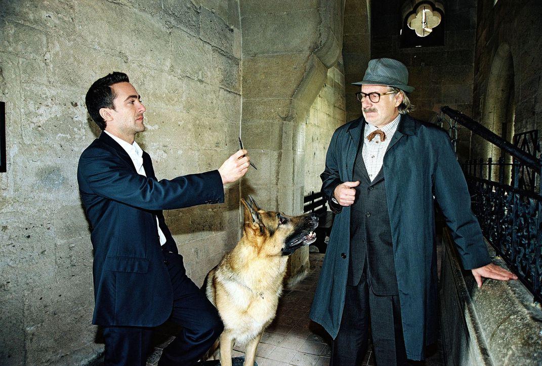 Marc (Alexander Pschill, l.) verhört den verdächtigen Burgführer Otto Marchart (Michael Schottenberg, r.). - Bildquelle: Ali Schafler Sat.1