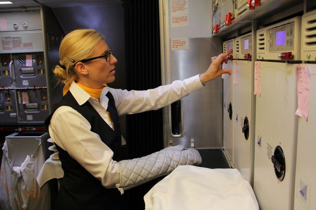 Darauf haben die Flugzeugfans in Deutschland gewartet. Die LH bekommt ihren ersten Superflieger A380. Eine Premiere für Crew, Bodenpersonal, Technik... - Bildquelle: SAT.1