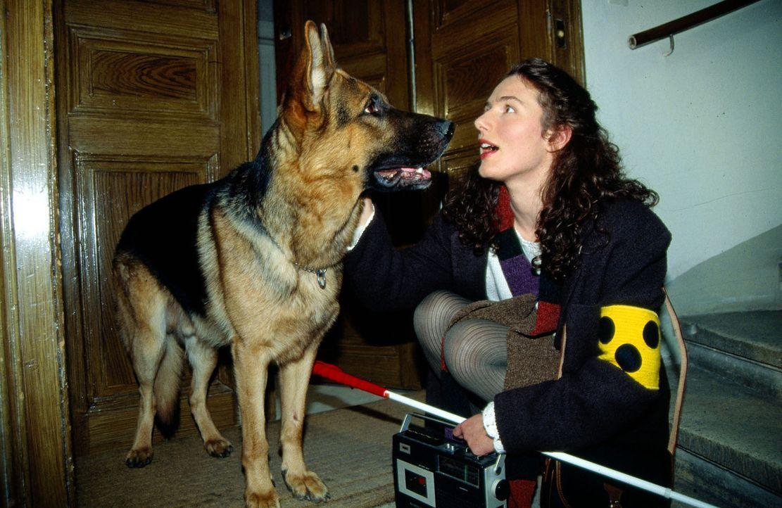 Rex bleibt bei der blinden Telefonistin Brigitte Heinrich (Maria von Blumencron), um sie zu beschützen. Sie ist Ohrenzeugin eines Hotelmordes. Die E... - Bildquelle: Ali Schafler Sat.1