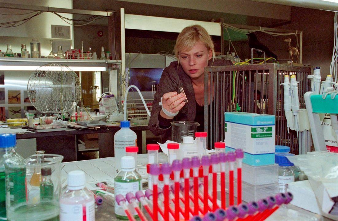Alex (Susanna Simon) entdeckt in Professor Nowaks Keller ein Labor ... - Bildquelle: Susan Skelton Sat.1