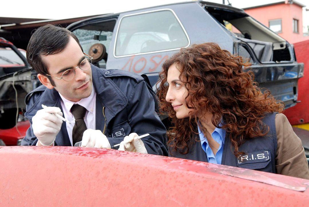 Marcus (Mathis Künzler, l.) und Judith (Proschat Madani, r.) untersuchen das Autowrack, in dem die Leiche gefunden wurde. - Bildquelle: Christoph Assmann Sat.1