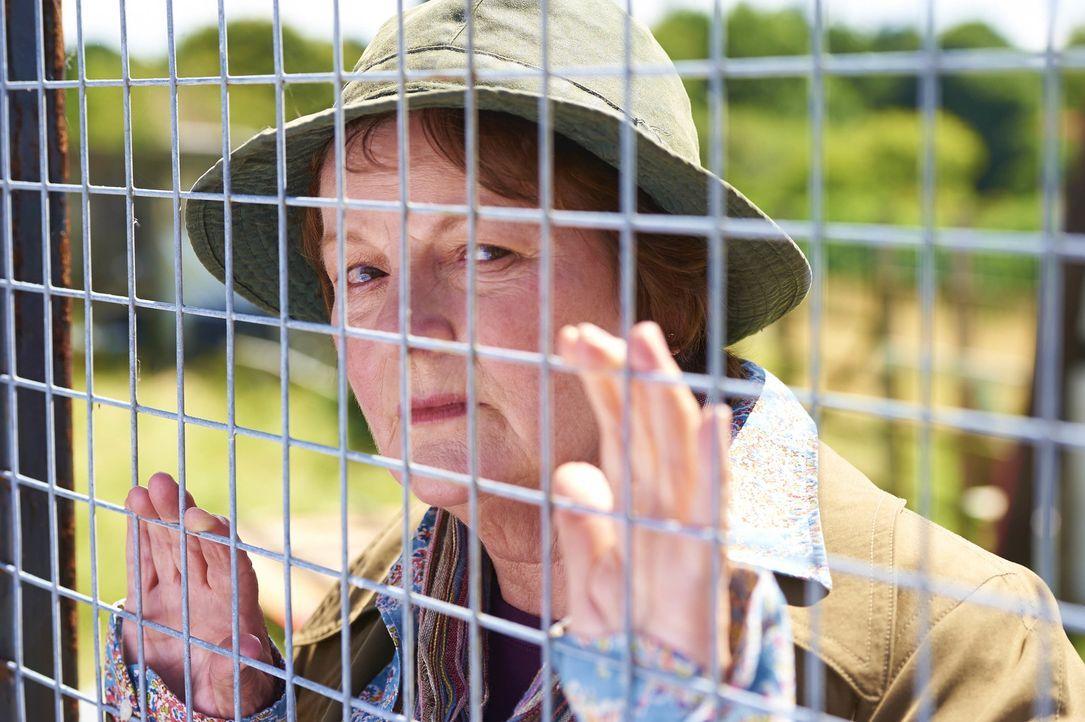 Vera Stanhope (Brenda Blethyn) - Bildquelle: Rachel Joseph ITV Studios