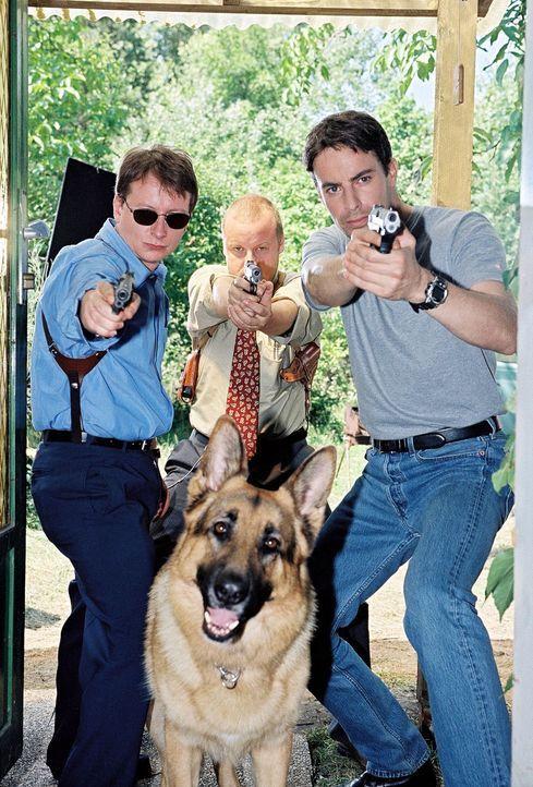 Kommissar Brandtner (Gedeon Burkhard, r.), Böck (Heinz Weixelbraun, l.), Kunz (Martin Weinek, M.) und Rex jagen den schizoiden Fred Kolar. - Bildquelle: Ali Schafler Sat.1