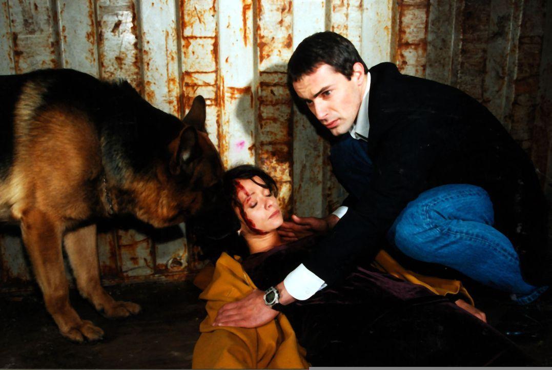 Kommissar Brandtner (Gedeon Burkhard, r.) und Rex finden Ines Kraus (Iris Junik, l.), die Schwiegertochter des Opfers, verletzt in einem Container. - Bildquelle: Ali Schafler Sat.1