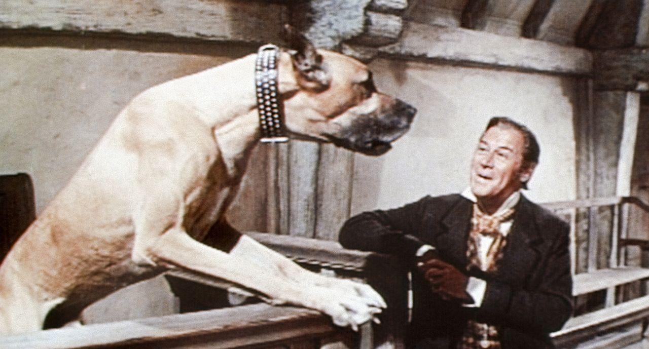 Kein Grund zur Panik - diese mannshohe Dogge will Doctor Dolittle (Rex Harrison) nur erzählen, dass sie ein Zipperlein plagt. Und Dolittle weiss nat... - Bildquelle: 20th Century Fox Film Corporation