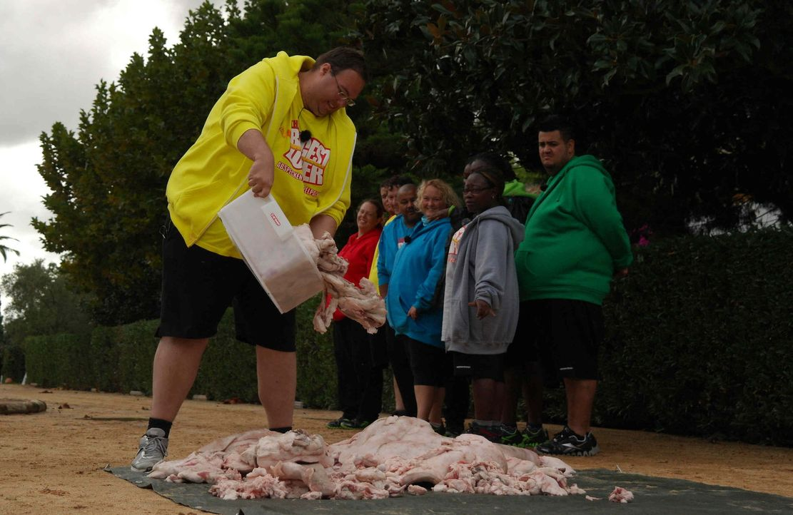"""Bei der """"Fettberg Challenge"""" werfen die Kandidaten bislang abgenommenes Gewicht in Form von Fett auf einen Berg. Ein weiterer Fettberg symbolisiert... - Bildquelle: SAT.1"""
