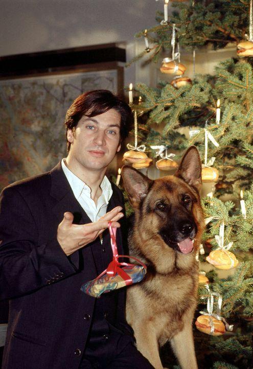 Kommissar Moser (Tobias Moretti) und Rex vor dem festlich-fürstlich-würstlich geschmückten Weihnachtsbaum auf der Wache ... - Bildquelle: Ali Schafler Sat.1