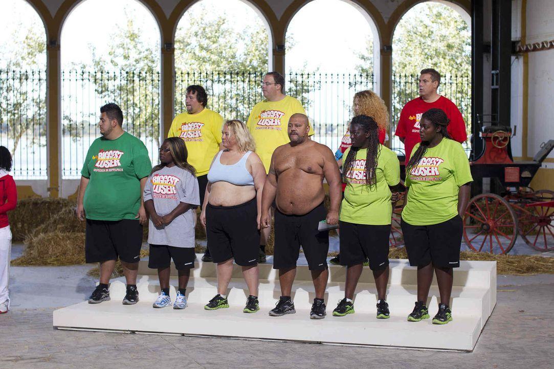 """Stolz präsentieren einige der Kandidaten auf der Waage ihr verlorenes Gewicht. Das harte Training und die radikale Umstellung der Ernährung bei """"The... - Bildquelle: Enrique Cano SAT.1"""