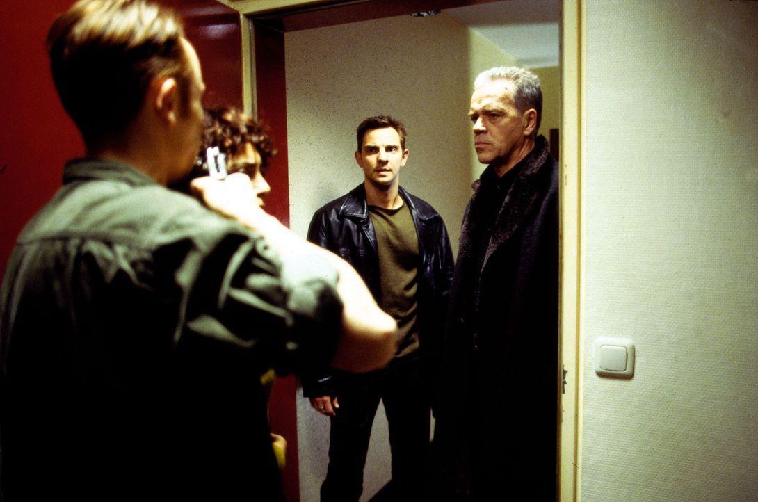 Ralf Zöllner (Oliver Hasenfratz, l.) droht durchzudrehen, als er sich von Wolff (Jürgen Heinrich, r.) und Tom (Steven Merting, 2.v.r.) in die Enge g... - Bildquelle: Leslie Haslam Sat.1