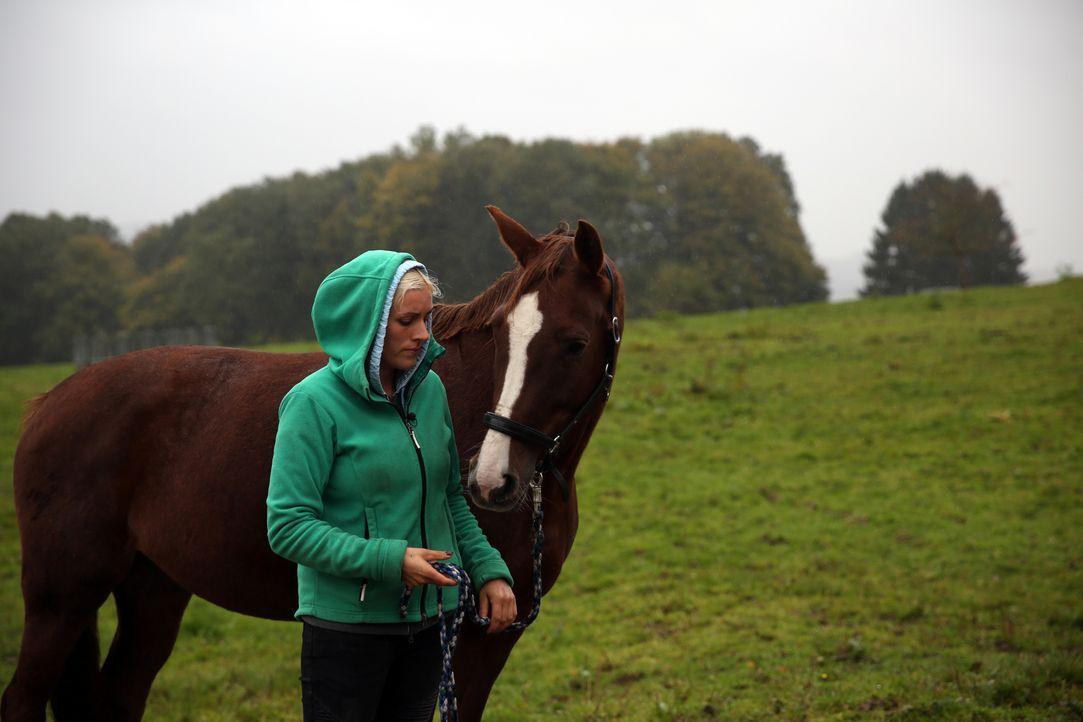 Mit zum Team gehört auch Tanja Fielenbach, seit mittlerweile 13 Jahren ist sie schon auf Gut Herrenhöhe. Hier hat sie auch ihre Ausbildung zur Tierm... - Bildquelle: SAT.1 Gold