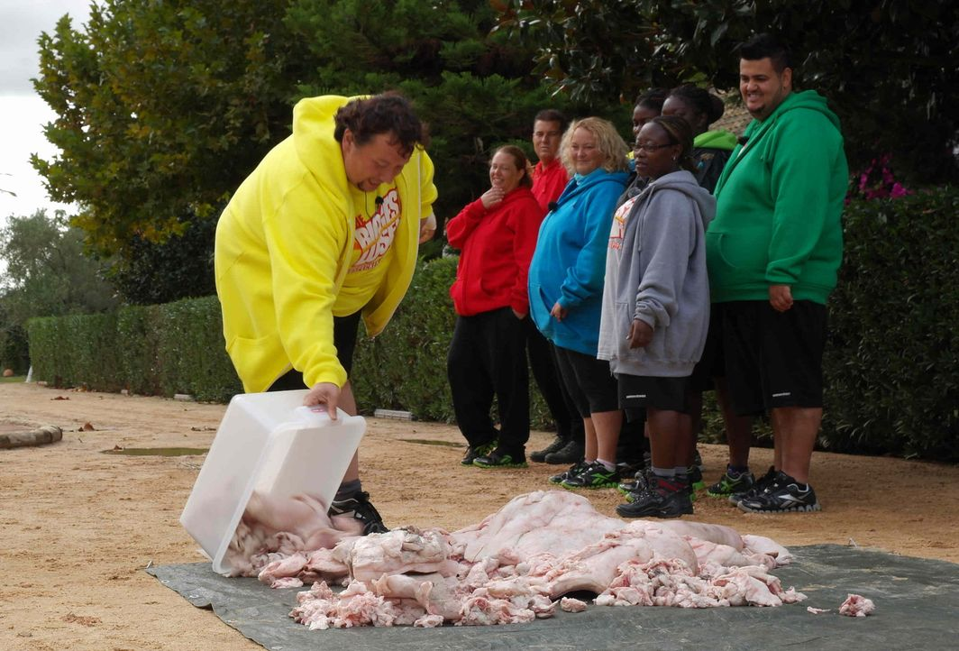 Um den Kandidaten vor Augen zu zeigen, wie viele überflüssige Kilos sie mit sich herumschleppen, müssen sie ihr Übergewicht in Form eines Fettberges... - Bildquelle: SAT.1