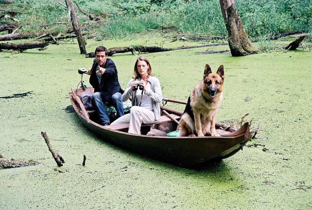 Marc (Alexander Pschill, l.), Niki (Elke Winkens, r.) und Rex versuchen, das Krokodil aufzuspüren ... - Bildquelle: Ali Schafler Sat.1