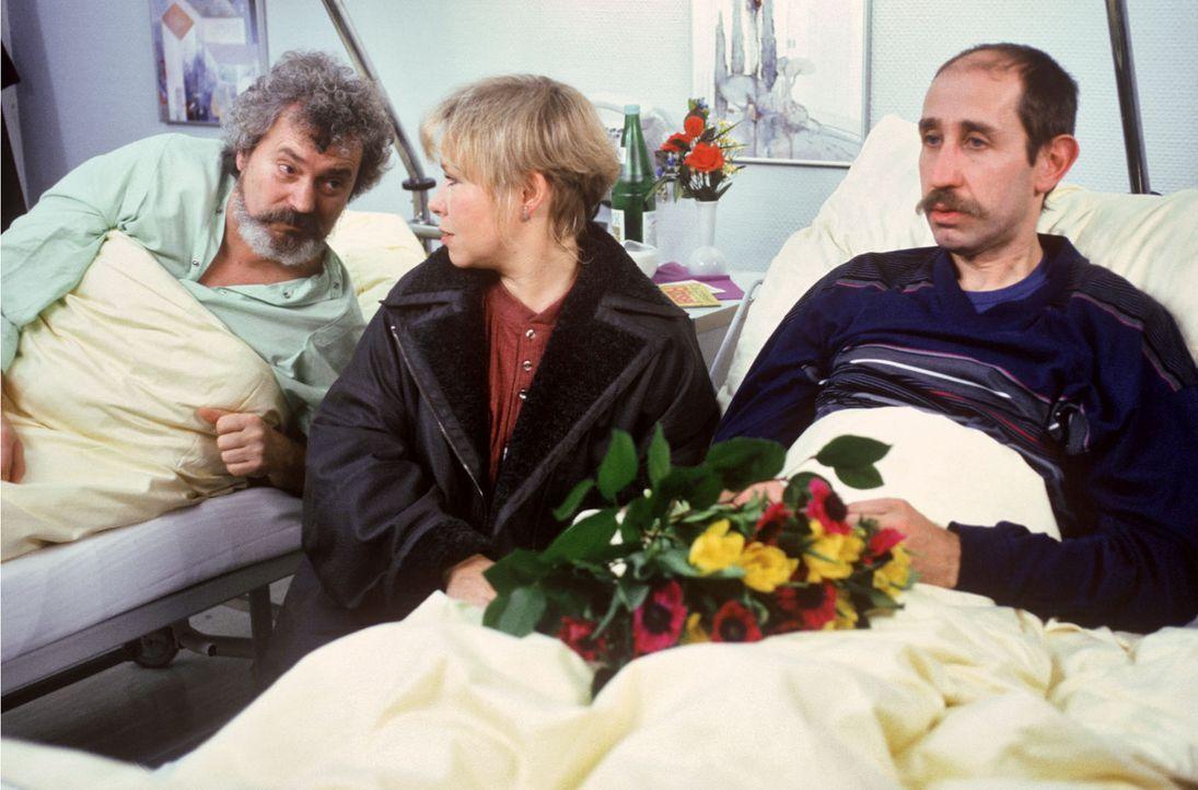 Sybille (Daniela Hoffmann, M.) verrät ihrem Freund Fred (Manfred Möck, r.), dass sie schwanger ist, doch der hört kaum zu. Dafür findet sie bei... - Bildquelle: Noreen Flynn Sat.1