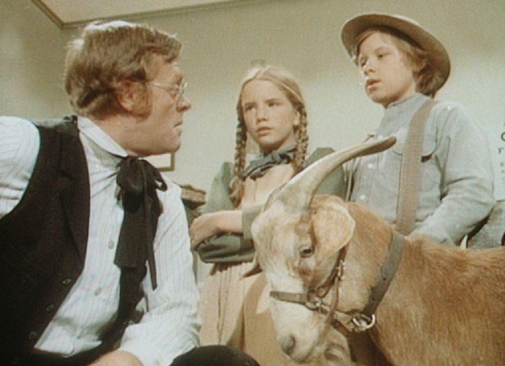 Laura (Melissa Gilbert, M.) und Carl (Brian Part, r.) können es kaum glauben, aber Dr. Baker (Kevin Hagen, l.) ist sich sicher: Der Ziegenbock ist v... - Bildquelle: Worldvision