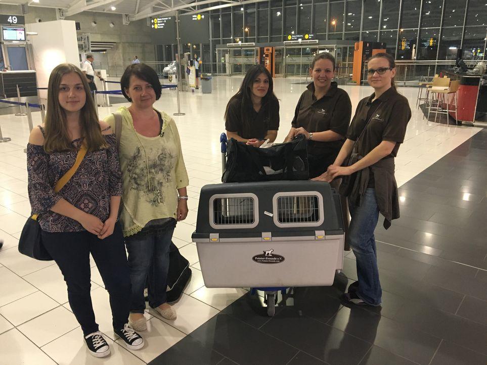 Britta Freitag (2.v.r.), Gründerin der Pointer-Freunde, und ihr Team begleiten Familie Peuker (l.) und ihr neues Familienmitglied nach Hause ... - Bildquelle: SAT.1