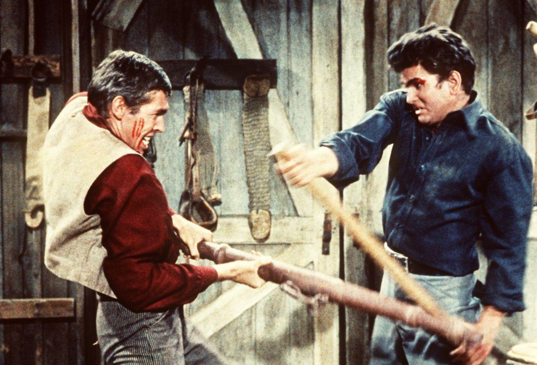 Weil Jessup (James Coburn, l.) Amy bedrängt hat, bringt ihm Little Joe (Michael Landon, r.) Manieren bei. - Bildquelle: Paramount Pictures