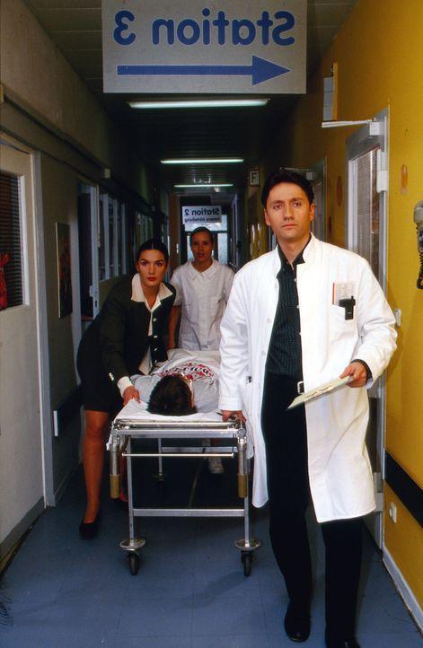 Dr. Herzog (Anne von Linstow, l.) liefert Felix (André Friedrich, liegend) in das  Krankenhaus ein. Dr. Kampmann (Ulrich Reinthaller, vorne) und Sch... - Bildquelle: Krajewsky Sat.1
