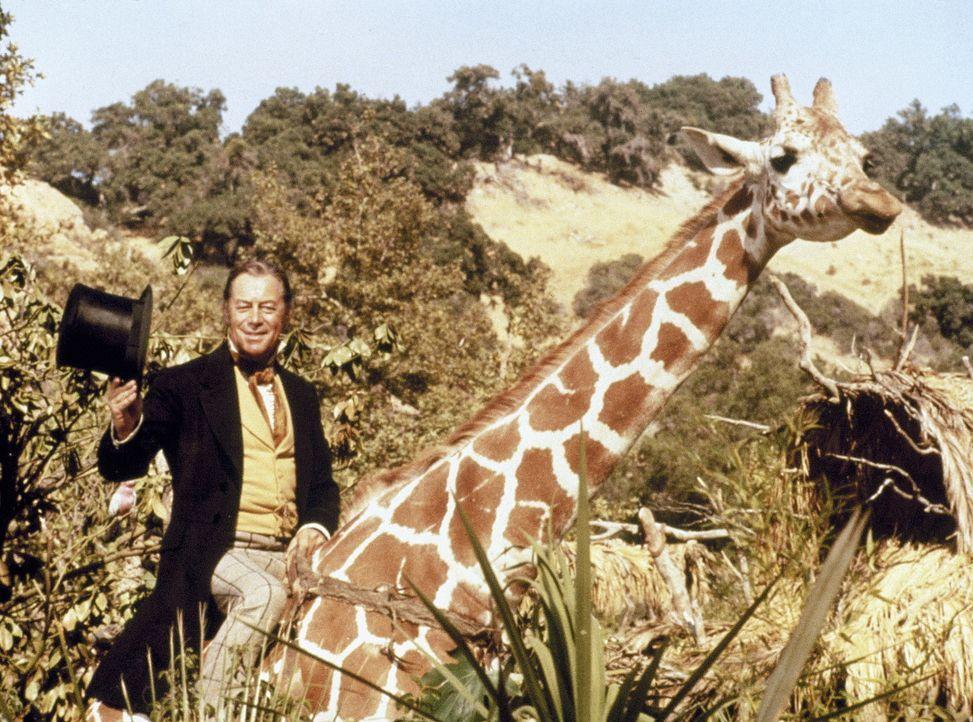 Dr. John Dolittle (Rex Harrison) hat diese Giraffe überredet, ihn ein Stück mitzunehmen ... - Bildquelle: 20th Century Fox Film Corporation