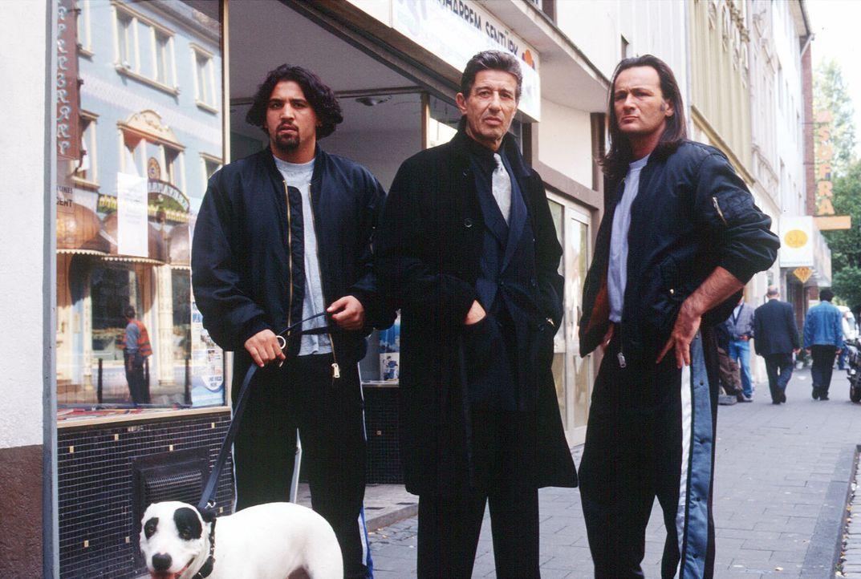 Der Albaner Zogu (Rolf Zacher, M.) und seine Schläger setzen alle Ladenbesitzer der Straße gewaltig unter Druck, um so deftige Schutzgelder abzusahn... - Bildquelle: Menke Sat.1
