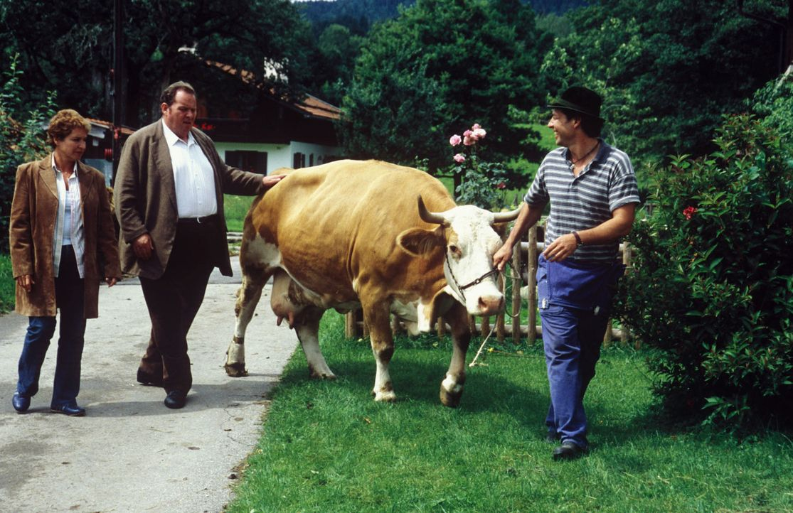 Josef Schäffermayer (Gregor Bloéb, r.) zeigt Sabrina (Katerina Jacob, l.) und Benno (Ottfried Fischer, M.) sein bestes Tier. - Bildquelle: Magdalena Mate Sat.1