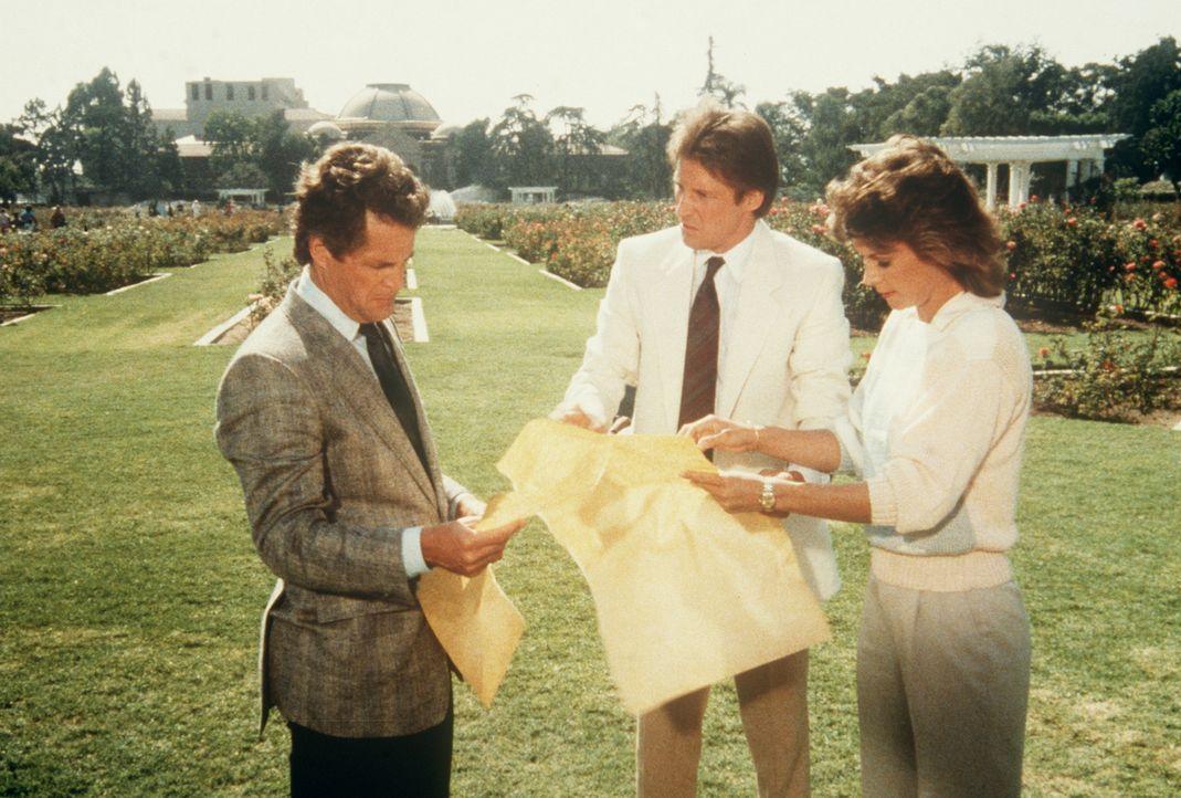 Lee (Bruce Boxleitner, M.) und Amanda (Kate Jackson, r.) mit der zerrissenen Unabhängigkeitserklärung. Wird der Restaurator Chamberlain (Ben Murphy,...