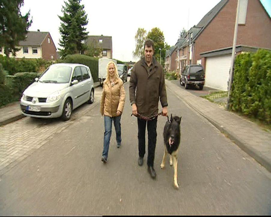 Beißen, Kläffen, Ungehorsam - Mein Hund braucht eine Therapie! Familie Kosanke (Bild) hat viele Probleme mit ihrem Hund ... - Bildquelle: SAT.1 Gold