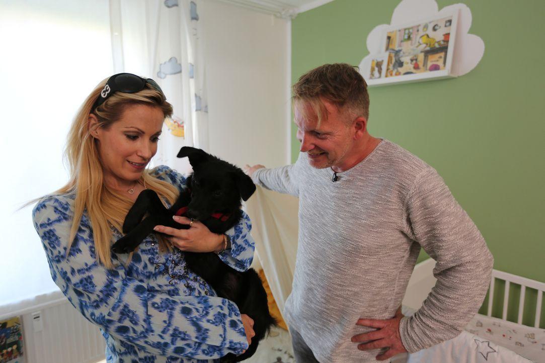 Moderatorin Andrea Kaiser (l.) lernt bei Hundecoach Enrico Lombardi (r.), wie man seinen Hund an ein Baby gewöhnt. Aus gutem Grunde ... - Bildquelle: SAT.1