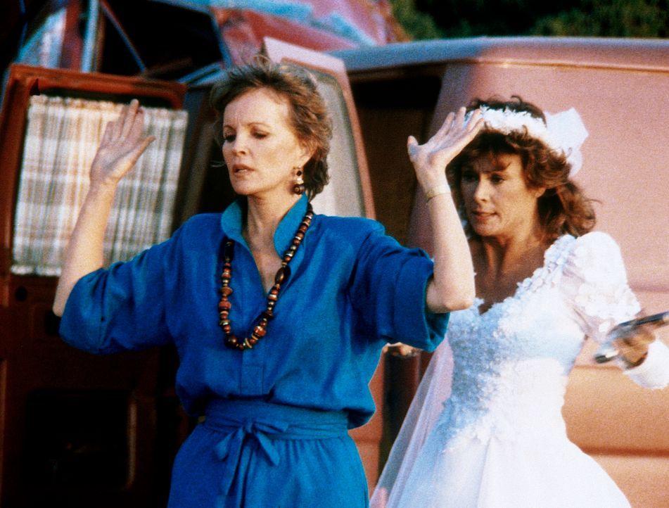 Hinter der Maske der harmlosen Touristin Jillian (Marylin Mason, l.) verbirgt sich eine gefährliche Agentin, der jedoch Amanda (Kate Jackson, r.) in...