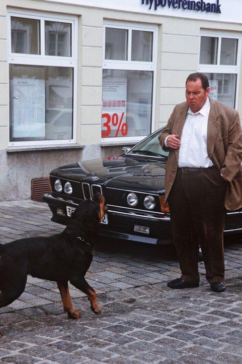 Benno Berghammer (Ottfried Fischer) wird von einem Hund angegriffen! - Bildquelle: Magdalena Mate Sat.1