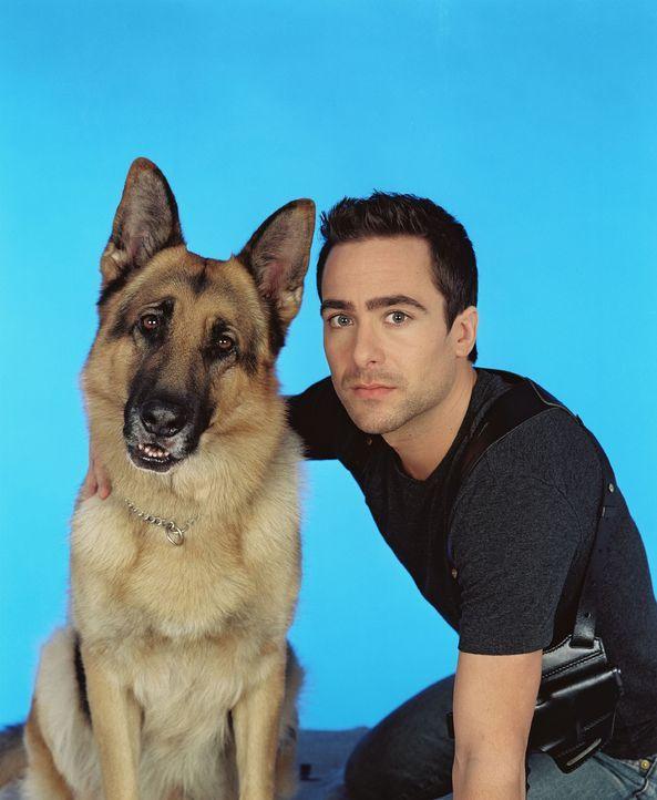 (8. Staffel) - Rex und Kriminalinspektor Marc Hoffmann (Alexander Pschill) sind nicht nur wahre Freunde, sondern auch ein unschlagbares Team ... - Bildquelle: Ali Schafler Sat.1