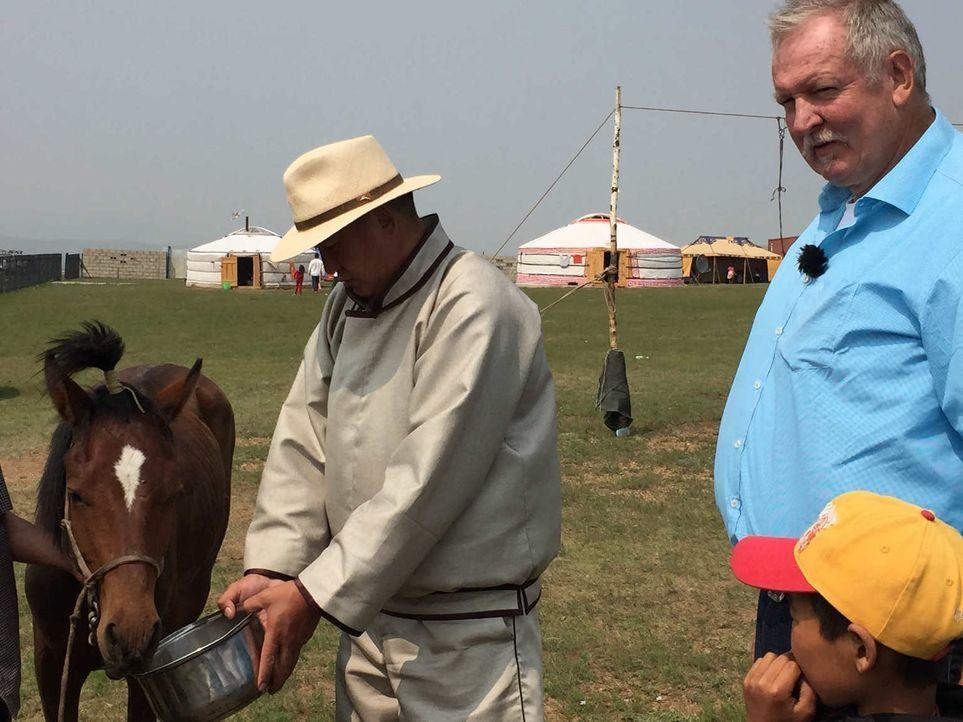 Tamme Hanken (r.) und sein bester Freund, der Schweinebauer Peter, reisen in eines der aufregendsten Länder der Welt: in die sagenumwobene Mongolei.... - Bildquelle: kabel eins