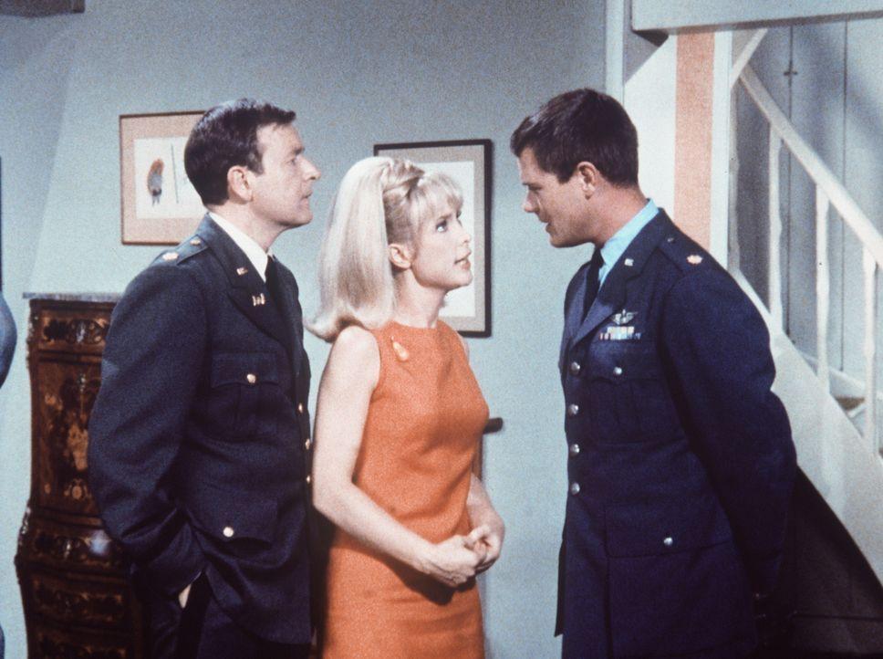 Tony (Larry Hagman, r.) versucht Jeannie (Barbara Eden, M.) klarzumachen, dass die Kunstwerke, die sie herbeigezaubert hat, schnell wieder verschwin... - Bildquelle: Columbia Pictures