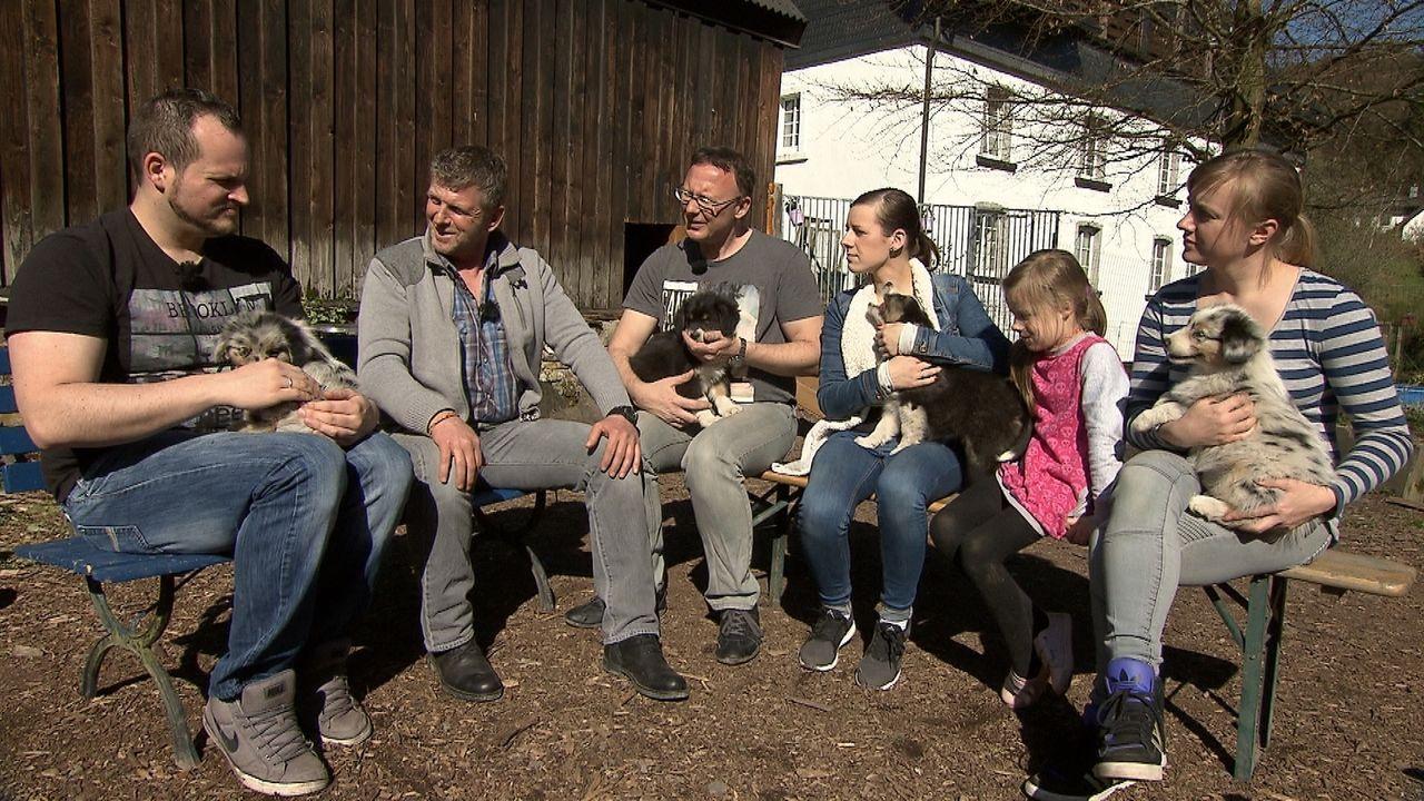 Familie Zieglerski möchte tierischen Zuwachs. Gemeinsam mit Hundeexperte Dirk Lenzen (2.v.l.) besuchen sie drei Hundezüchter, um den geeigneten Hund... - Bildquelle: SAT.1