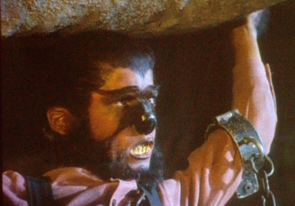 Als Werwolf verkleidet kann Albert (Matthew Laborteaux) sogar einen Felsbrocken problemlos heben. Leider verrät Carry, dass der Stein nur aus Pappma... - Bildquelle: Worldvision