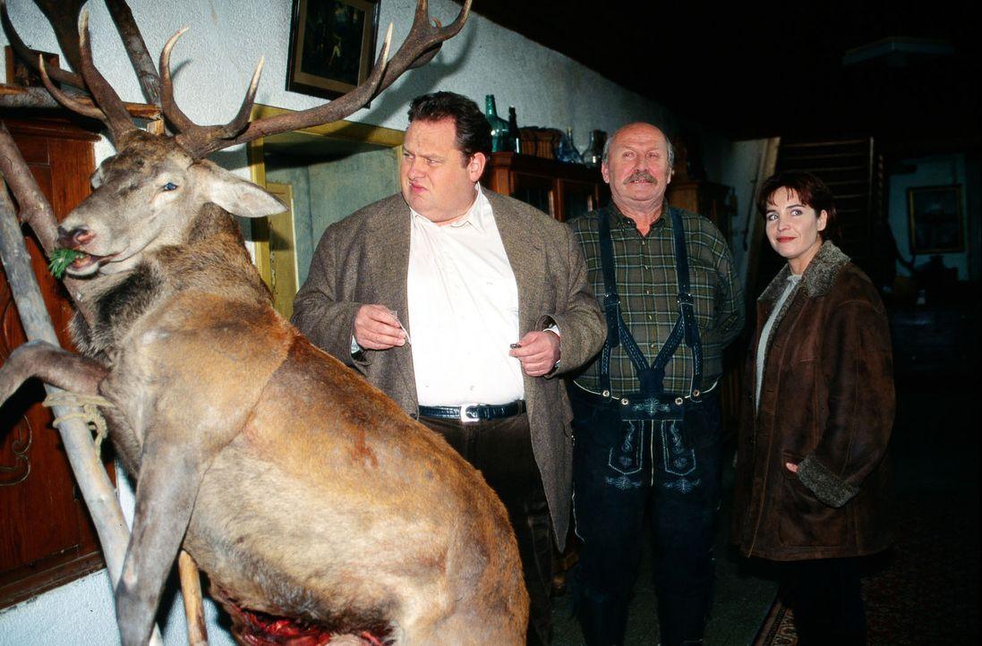 Jäger Erwin Burger (Anton Pointecker, M.) lässt Kommissar Berghammer (Ottfried Fischer, l.) und Sabrina Lorenz (Katerina Jacob, r.) in die gute Stub... - Bildquelle: Magdalena Mate Sat.1