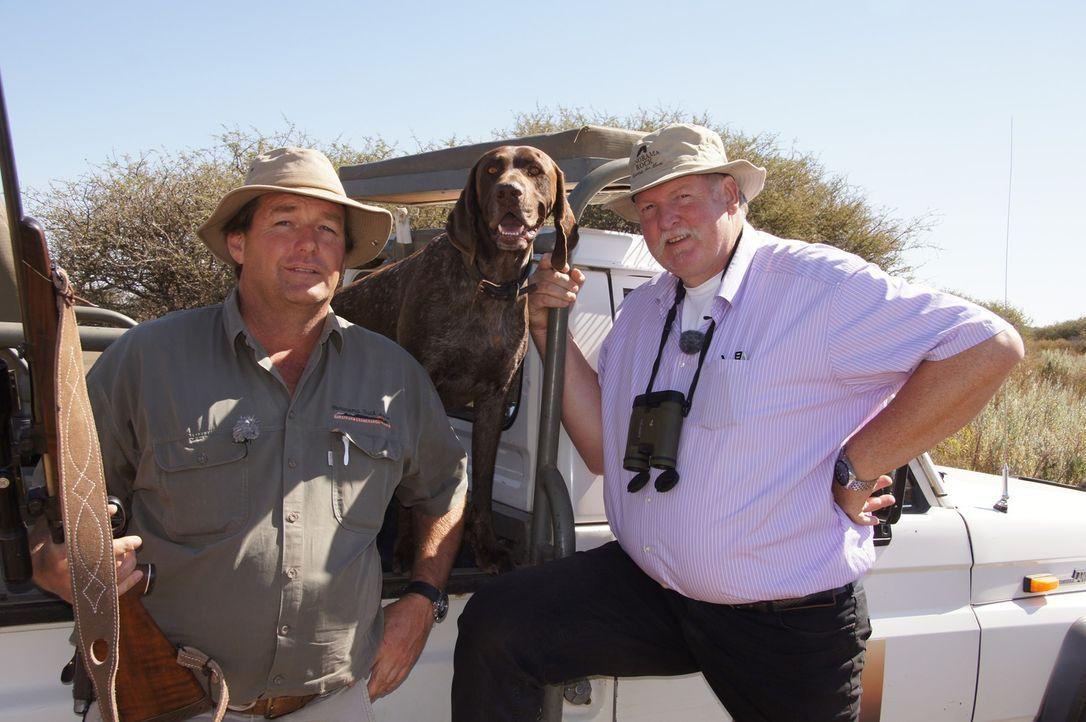 Untersuchen nicht nur afrikanische Wildtiere: Gunnar Jensen (l.) und der Ostfriesische Tierchiropraktiker Tamme Hanken (r.) ... - Bildquelle: SAT.1
