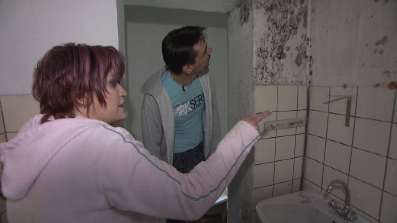 Jan (r.) und Janine (l.) sind entsetzt. Überall im Haus ist Schimmel ... - Bildquelle: SAT.1