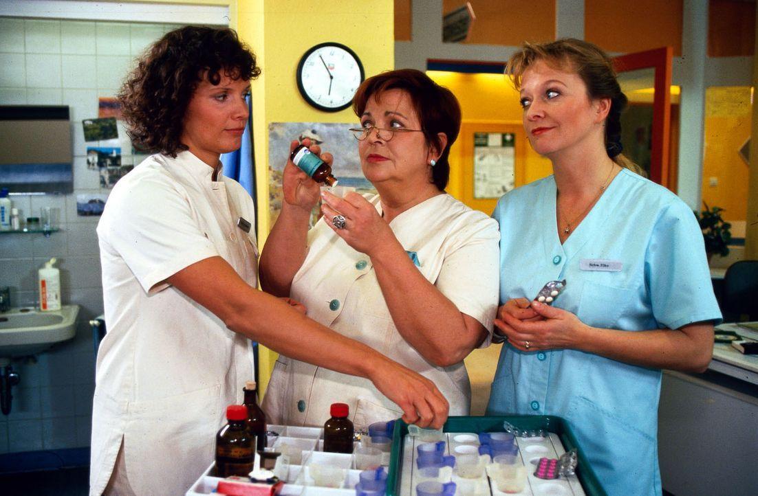 Schwestern-Treffen: Fanny Stephan (Julia Hentschel, l.), Klara (Walfriede Schmitt, M.) und Elke (Ulrike Mai, r.) - Bildquelle: Noreen Flynn Sat.1