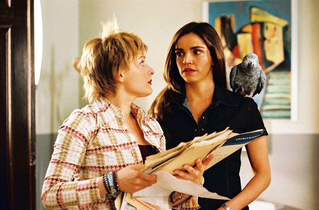 Biene (Isabel Tuengerthal, l.) und Sandra (Rebecca Immanuel, r.) haben genug von den Papageien. Die haben das Büro komplett verwüstet. - Bildquelle: Hardy Spitz Sat.1