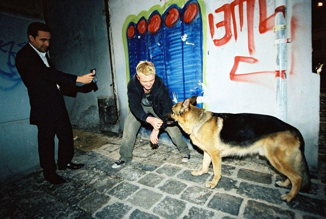 Marc (Alexander Pschill, l.) und Rex stoßen bei ihren Ermittlungen auf einen Junkie (Manuel Löffler, M.). Hat er etwas mit dem Mord zu tun? - Bildquelle: Ali Schafler Sat.1