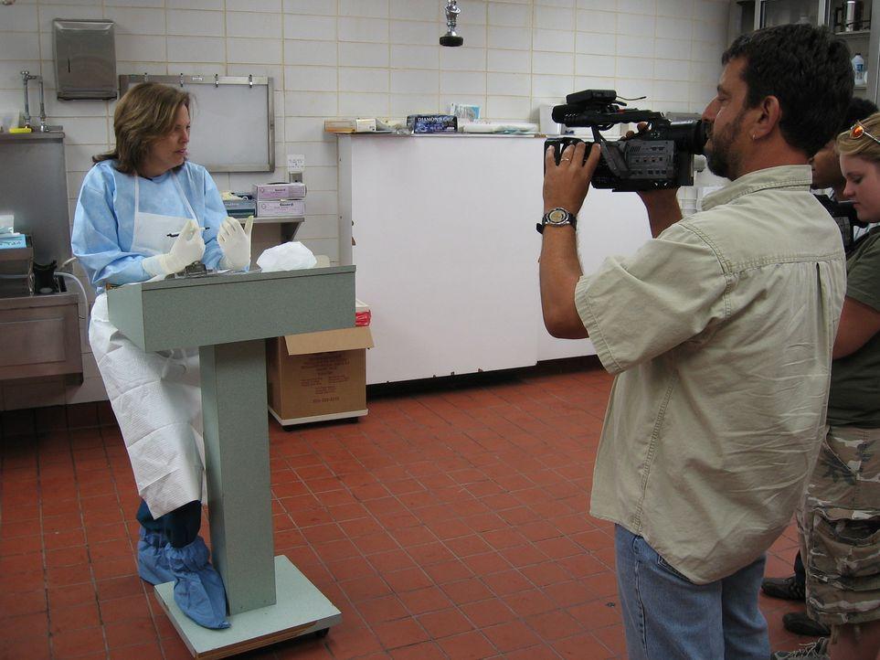 """In der Reality-Doku """"Dr. G - Beruf: Gerichtsmedizinerin"""" erklärt Dr. Jan Garavaglia den Zuschauern, wie und warum Menschen plötzlich und unerwartet... - Bildquelle: MMXI ATLAS MEDIA CORPORATION"""