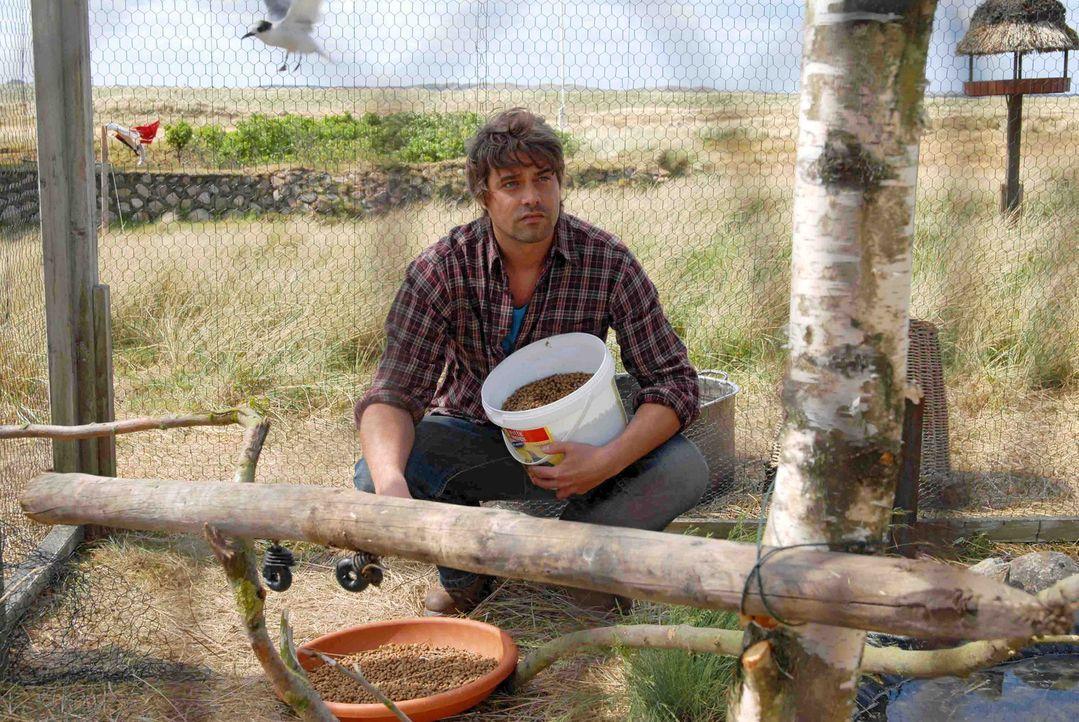 Georg (Raphaël Vogt) lebt sehr zurückgezogen in einem Haus am Meer und kümmert sich mit Hingabe um seine Vögel. - Bildquelle: Hardy Spitz Sat.1