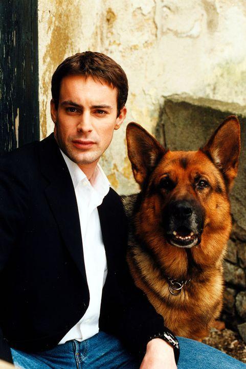 (5. & 6. Staffel) - Kommissar Brandtner (Gedeon Burkhard) und sein tierischer Ermittler Rex ... - Bildquelle: Ali Schafler Sat.1