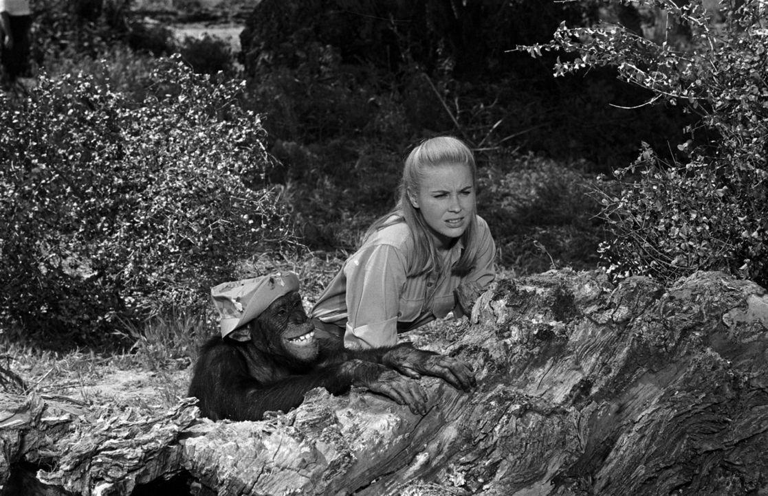 Auf Wildererjagd: Paula (Cheryl Miller) mit Judy ... - Bildquelle: 2007 Warner Brothers