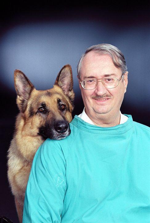 Gerechtsmediziner Dr. Leo Graf (Gerhard Zemann) verhilft oft Rex und seinen Herrchen auf die richtige Spur ... - Bildquelle: Ali Schafler Sat.1