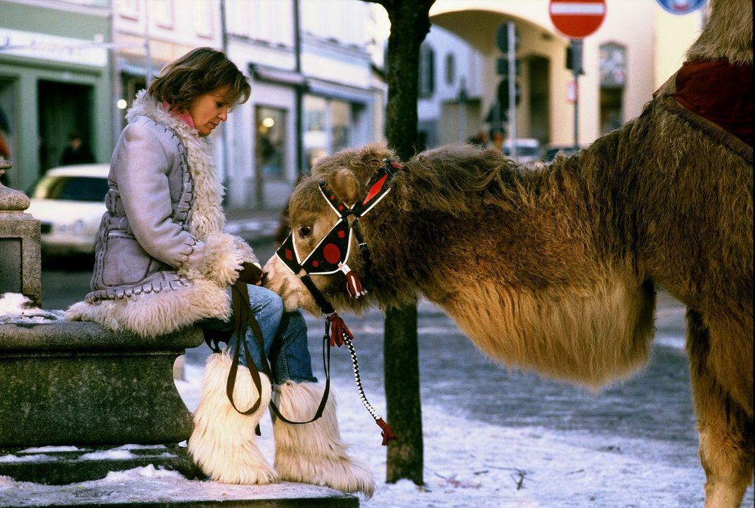Die Dompteurin Madeleine (Ulrike Kriener) kommt nach 17 Jahren mal wieder nach Bad Tölz und trifft hier auf Benno, mit dem sie damals eine leidensch... - Bildquelle: Magdalena Mate Sat.1