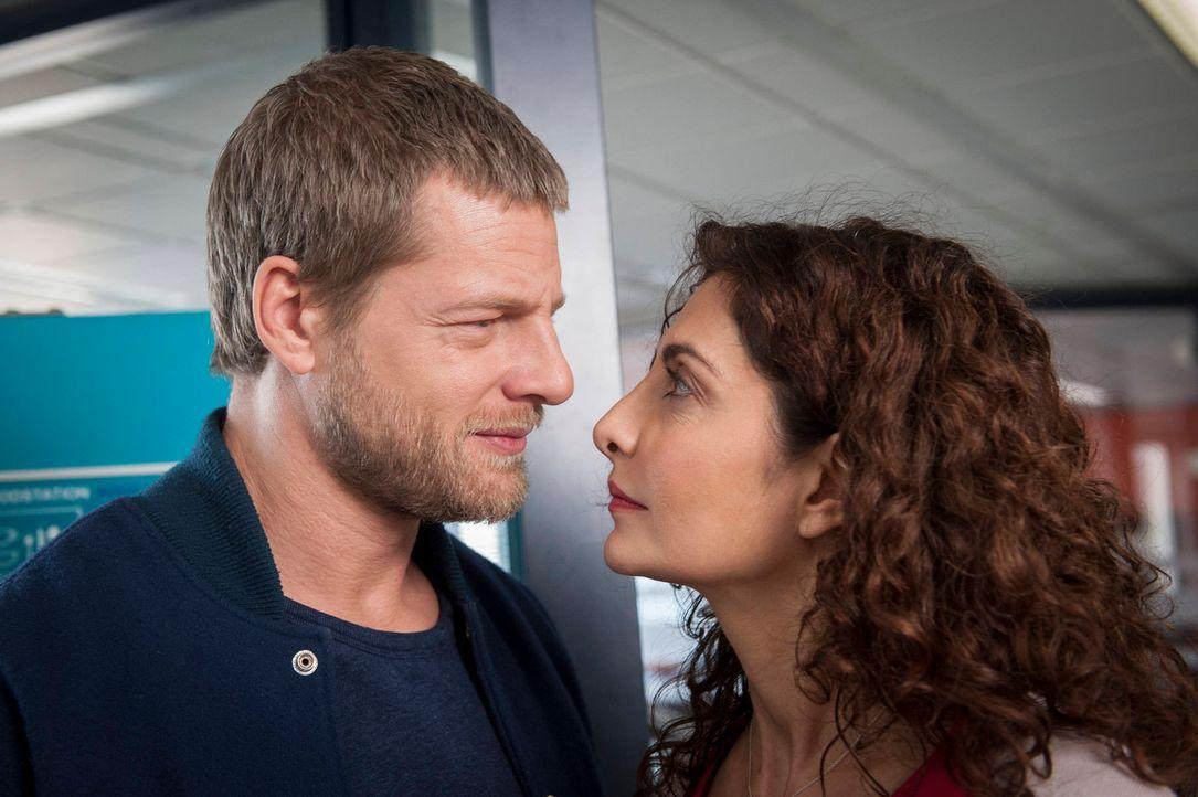 Noch ist die Welt von Mick (Henning Baum, l.) und Tanja (Proschat Madani, r.) in Ordnung, doch dann wird ein angesehener Kollege ermordet aufgefunde... - Bildquelle: Martin Rottenkolber SAT.1